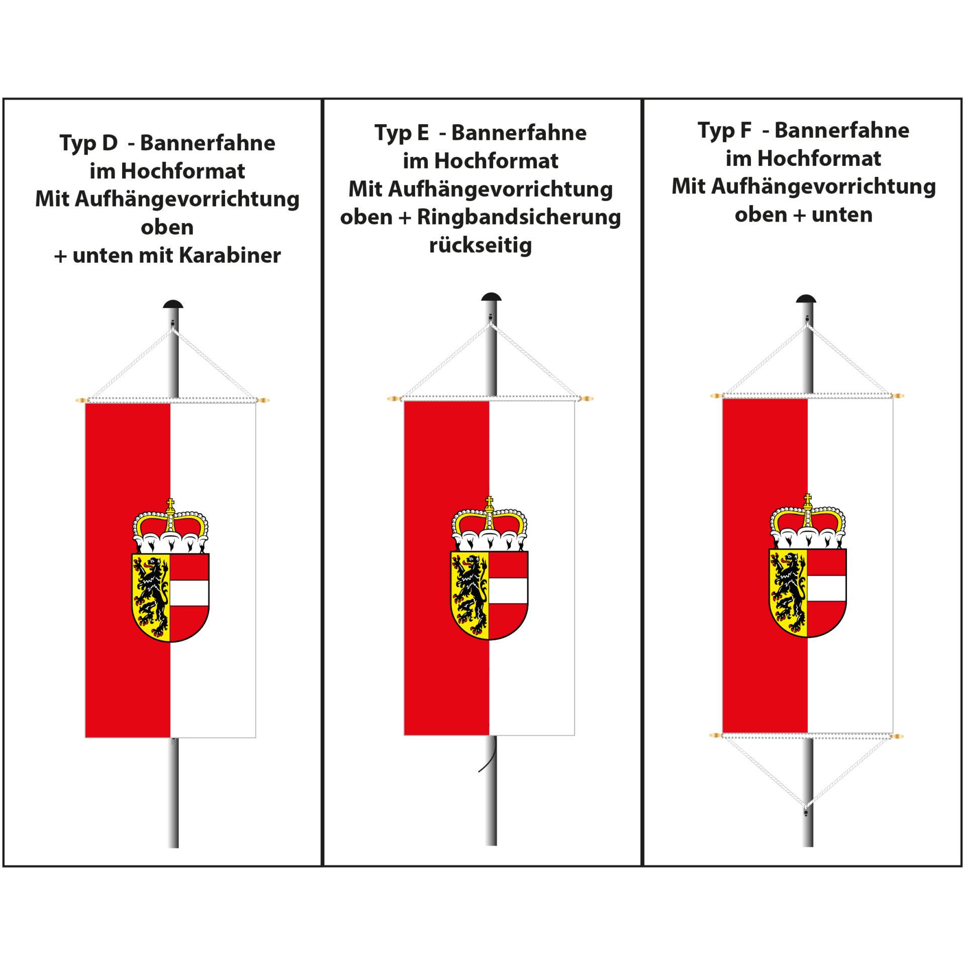 bannerfahnen salzburg triangelfahnen salzburg logodrucke g nstig kaufen im online shop. Black Bedroom Furniture Sets. Home Design Ideas